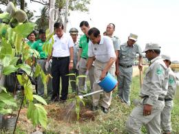 CCCA Celebrates World Environment Day